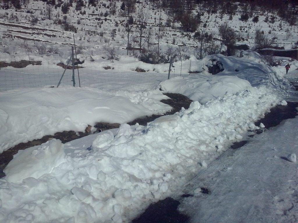 Nieve Barbenuta